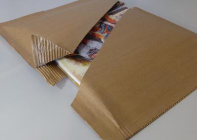 Carton autoscellant - packlight